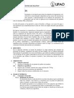Informe Puente Palitos(1)