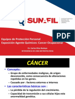 Cáncer Profesional - SUNAFIL