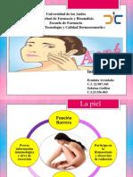 Diapositivas Seminario Acné