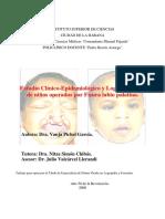 tesis_logopedia_de_vanja_.pdf