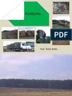 Colheita Florestal 1.pdf
