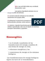 T10 Bioenerg%C3%A9tica