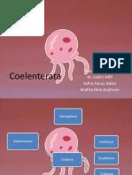 Biologi Animalia Coelenterata