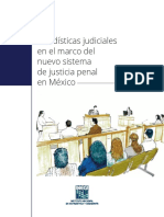 ESTADISTICAS JUDICIALES EN EL MARCO DEL NUEVO SISTEMA DE  JUSTICIA PENAL.pdf