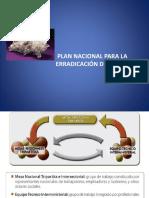 planesi-150605212643-lva1-app6892
