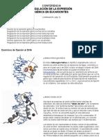 Regulación de la expresión génica3