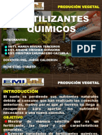 FERTILIZANTES QUIMICOS.pptx