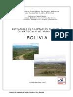 1Estrategia de adaptación a nivel municipal.pdf
