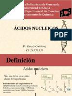 Ácidos Nucleicos- Kensly Gutierrez