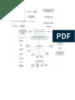 Mapas Conceptuales Capítulo 1 y 3_adriana_fase 2