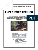 290648952 Expediente Tecnico Piscigranja