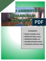 Informe - Medio Ambiente y Desarrollo Sostenible