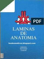 LAMINAS_SNC.pdf