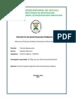 1 Investigacion Formativa Química Organica 2017-I-Pucallpa