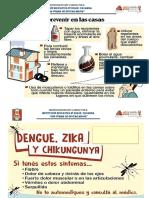 Afiches Dengue