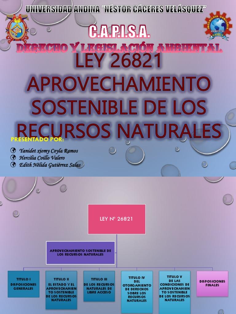 9fb04aef013b LEY 26821