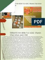 TERBUKTI!! WA 0858-7161-4243, Vitamin Otak Untuk Janin OSB