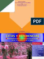 Citas y referencias  con las normas de la  A.P.A.