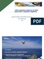 II_6_Especies invasoras en islas_Alfonso_Aguirre_PARTE 1.pdf