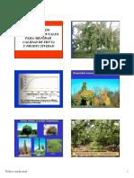 podaconduccion.pdf