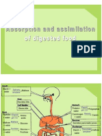6.5 Absorption and Assimilation of Digested Food