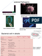 17AU_MM_2-3_Bacterial VirulenceFactors and Pathogenicity.pdf