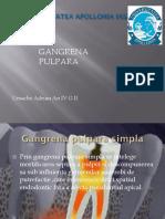 ursache adrian endodontie.2 - Copy.pptx