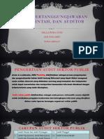 AUDIT, Pertanggungjawaban Pemerintah, Dan Auditor