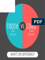 Tooth vs Cord Stem Cells