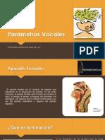 Nuevo Parámetros Vocales