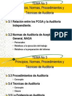 laminas principios, normas y técnicas de auditoria