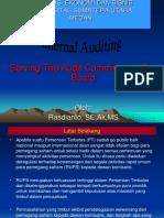 Audit Internal 5