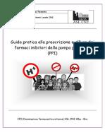 Guida-PPI-DEFINITIVO.pdf
