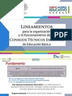 LineamientosCTE2017 Final 1