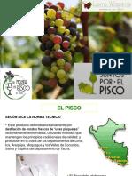 Pisco Presentacion Fortaleza 2015