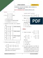HT 1 Matrices