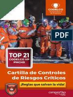Libro RC Codelco Chuquicamata