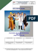 Plan Anual de Salud Ocupacional - Mvs