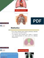 Clase 10 Mediastino y Aparato Respiratorio