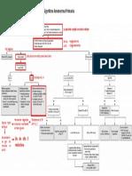 Algoritmo amenorrea primaria