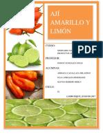 Aji Amarillo - Limon