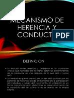 Mecanismo de Herencia y Conducta