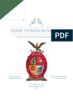 Fiebre Tifoidea en Sinaloa - Trabajo Final