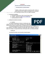Atividade supervisionada - Conceitos e Protocolos para a Internet.pdf