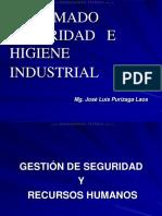curso-diplomado-seguridad-higiene-industrial-gestion-recursos-humanos-principios-modelos-clasificacion-herramientas.pdf