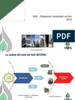 SAG - Perfil 2014