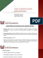 INSTALACIONES PARA BOVINOS.pdf