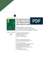 Capital Social Exito Microempresas Nopal