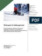 Wintersport im SalzburgerLand