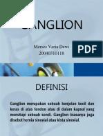 225989266-Ganglion